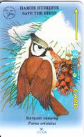 BULGARIA(GPT) - Bird, Parus Cristatus, CN : 35BULB(type 4), Tirage 8000, 03/96, Used - Bulgaria