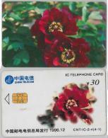 PHONE CARD- CINA (E28.9.3 - Cina
