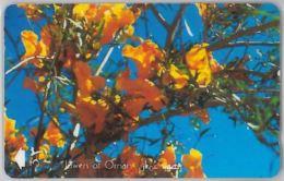 PHONE CARD- OMAN (E28.32.8 - Oman