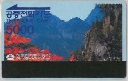 PHONE CARD- COREA DEL SUD (E30.22.5 - Korea, South