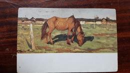 "Russia.   Tourshansky  ""Evening Sun"" Landscape - Russian Vintage Postcard -  Art - 1910s Granberg - Horse - Cavalli"