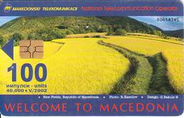F.Y.R.O.M. - Rice Field, ISDN, Chip GEM3.3, Tirage 40000, 05/02, Used - Macedonia