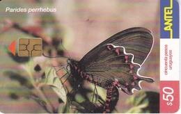 Nº 245 TARJETA DE URUGUAY DE UNA MARIPOSA (BUTTERFLY) CHIP NEGRO - Mariposas