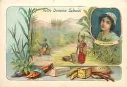 Chromos Réf. T 16-098. Gouttes Liviniennes De Trouette Perret - Notre Domaine Colonial La Réunion - Trade Cards