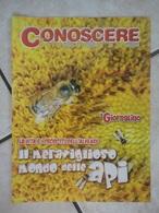 Conoscere Insieme - Opuscoli - Il Meraviglioso Mondo Delle Api - IL GIORNALINO - Livres, BD, Revues