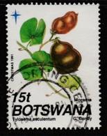 Botswana 1991 Christmas - Seed Pods  15 T Multicoloured SW 502 O Used - Botswana (1966-...)