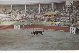 Postcard Bull Fight Across The Rio Grande In Mexico  My Ref  B12540 - Corrida