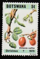 Botswana 1979 Christmas - Flowers   5 T Multicoloured SW 239 ** MNH - Botswana (1966-...)