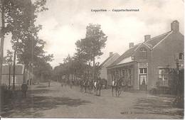 Cappellen Cappelschesteenweg Hoelen 4977 - Kapellen