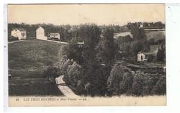 CPA-69-1921-LES TROIS RENARDS ET MONT PINAUD- - France