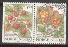 Norwegen 1204/05 O - Norwegen