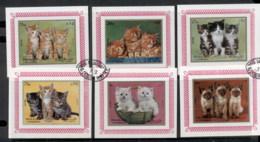 Sharjah 1972 Mi#1386-1391 Kittens 6x Deluxe MS CTO - Sharjah
