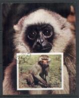 Sharjah 1972 Mi#MS117 Monkeys & Apes MS IMPERF CTO - Sharjah