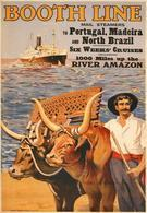 British Navigation Postcard Booth Line Portugal-Madeira-North Brazil 1925 - Reproduction - Advertising