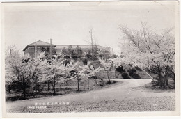 Building With Cherry Trees Blossom  ('Utsunomiya' Printed On Back) - (Japan) - Japan