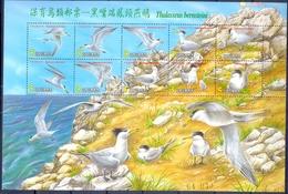 TAIWAN  ( AZI 191) - Marine Web-footed Birds