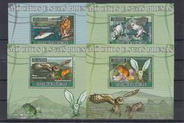 C3. S. Tome E Principe - MNH - Birds - Owls - DELUX - Owls