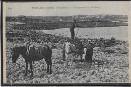 Tregastel-Primel - Chargement De Goëmon - Autres Communes