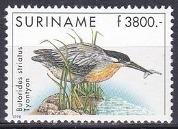 Surinam Suriname 1998 Tiere Fauna Animals Vögel Birds Oiseaux Aves Uccelli Reiher Egrett Heron, Mi. 1671 ** - Suriname