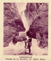 Chromo, Image, Vignette : Cameroun, Chutes De La Koudini, En Région Baya (6 Cm Sur 7 Cm) - Unclassified