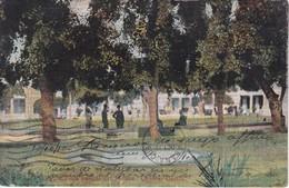 POSTAL DE HOLGUIN VISTA PARCIAL DEL PARQUE GENERAL GARCIA DEL AÑO 1910 (JOSE BETANCOURT) - Cuba
