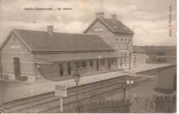 Calmpthout Heide De Statie Hoelen 6727 - Kalmthout