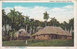 POSTAL DE LA HABANA DE UN PAISAJE CUBANO - BOHIOS DEL AÑO 1929 (C. JORDI) - Cuba