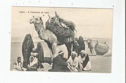 ADEN A CARAVAN AT REST 41 250 - Yémen