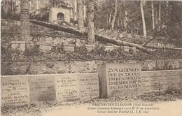 HARTMANNSWILLERKOPF (Vieil-Armand) - Carte Postale - Le Grand Cimetière Allemand (124e Régiment D'Inf. De Landwehr). - France