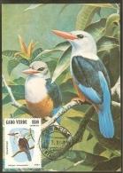 CAP VERT Carte Maximum - Halcyon Leucocephala - Cap Vert