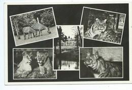 Spa Jardin Zoologique ( Zoo ) Château De La Havetta - Spa