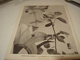 ANCIENNE PUBLICITE LAIT VITAMINE PHEBEL CREATRICE MARCELINE SEBALT 1941 - Parfums & Beauté