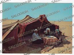 ALGERIE  Groupe Folklorique - Sud Algerien - Algeria - Algeria