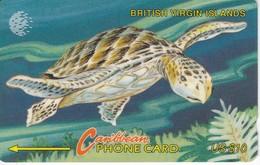 TARJETA DE BRITISH VIRGIN ISLANDS DE UNA TORTUGA (TURTLE)  22CBVA - Virgin Islands