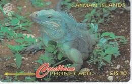 TARJETA DE ISLAS CAYMAN DE UNA IGUANA (13CCIB) - Isole Caiman