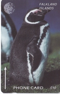 TARJETA DE LAS FALKLAND DE UN PINGUINO 6CWFA  (PENGUIN) - Falkland Islands