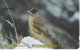 TARJETA DE LAS FALKLAND ISLANDS DE UN PAJARO - BIRD  (339CFKC) - Falkland Islands