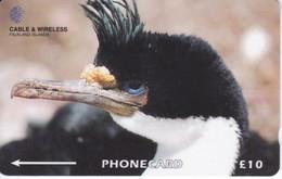 TARJETA DE LAS FALKLAND ISLANDS DE UN CORMORAN - BIRD-PAJARO  (229CFKA) - Falkland Islands