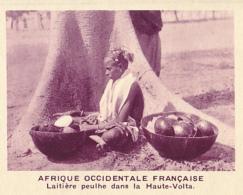 Chromo, Image, Vignette : Afrique Occidentale Française, Laitière Peulhe Dans La Haute-Volta (6 Cm Sur 7 Cm) - Unclassified