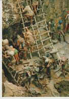 213-Mestieri-Miniere-Minatori Amazzonia - Miniere
