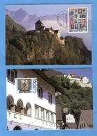 LIECHTENSTEIN - Annata Completa 2002 Maximum Karte - Liechtenstein
