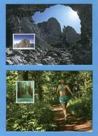 LIECHTENSTEIN - Annata Completa 2009 Maximum Karte - Liechtenstein