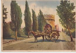 217-Mestieri-Carrettieri-Carretto Con Cavallo-Roma-v.1941 X Misterbianco-Catania - Paesani