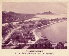 Chromo, Image, Vignette : Guadeloupe, L'île Saint-Martin, Le Haricot (6 Cm Sur 7 Cm) - Unclassified