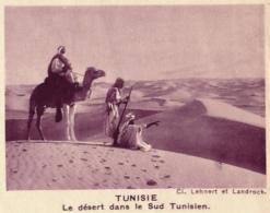 Chromo, Image, Vignette : Tunisie, Le Désert Dans Le Sud Tunisien, Méhariste, Dromadaire (6 Cm Sur 7 Cm) - Unclassified