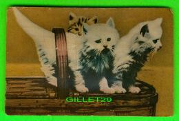 CATS - CHATS DANS UN PANIER - CARTE MIALE PESANT AU CENTRE - CIRCULÉE EN 1955 - - Chats