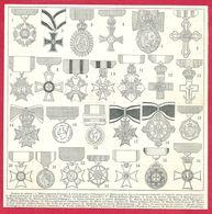 Ordres Du Mérite, Mérite Agricole (France), Croix Du Mérite (Allemagne), Pour Les Arts Et Les Sciences ... Larousse 1908 - Old Paper