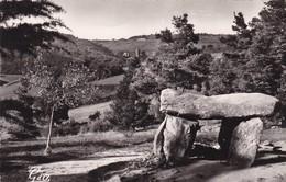 63. SAINT NECTAIRE. LE DOLMEN - Dolmen & Menhirs