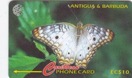 Antigua, ANT-132A, Butterfly, 2 Scans.   132CATA . - Antigua And Barbuda
