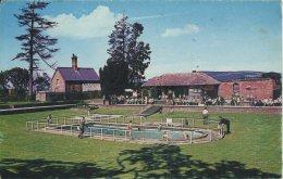 FLINTSHIRE - ST ASAPH LLANNERCH ZOO BATHING POOL Clw202 - Flintshire